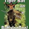 Tiger Bat on a Buffalo.