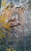 Rock Climbing Photo: Logan Smestad at the base of Advanced Birding.