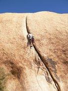 Rock Climbing Photo: Eff Eight onsight Jtree