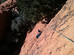 Rock Climbing Photo: Top of route