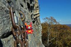 Rock Climbing Photo: Mac Wall