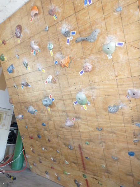 Rock Climbing Photo: Our woody