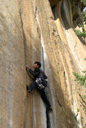 Rock Climbing Photo: Shumin Woo in search of holds as he onsights the v...