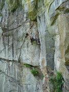 "Rock Climbing Photo: Olga Mirkina starting up a TR run of ""Fat and..."