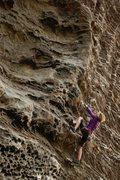 Rock Climbing Photo: lily