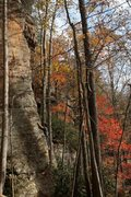 Rock Climbing Photo: fall day on reserved seating