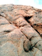 Rock Climbing Photo: snapping turtle, the only climb worth doing on the...