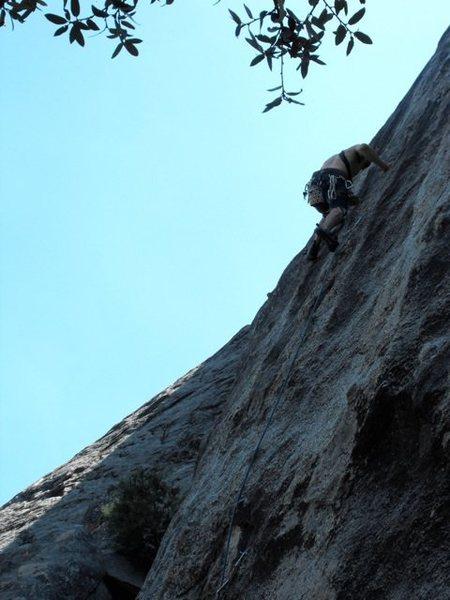Rock Climbing Photo: Leading Bear Damage, 7/24/11