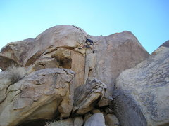 Rock Climbing Photo: Again I believe this is the crack left of Early Re...