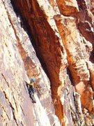 Rock Climbing Photo: Johnny Vegas meets New Zealand climber