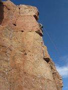 Rock Climbing Photo: cactus cliff