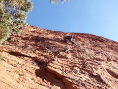 Rock Climbing Photo: brian on safety first