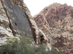 Rock Climbing Photo: Romper Room