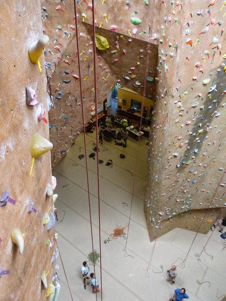 Rock Climbing Photo: Mesa Rim Climbing Center, San Diego