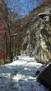 Rock Climbing Photo: The carriage trail with leaves on the trees and sn...