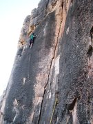 Rock Climbing Photo: Near the top of Teenage Prostitutes.