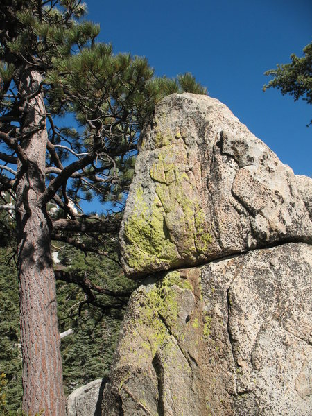 Random Boulder, Black Mountain