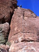 Rock Climbing Photo: 11/20/2011