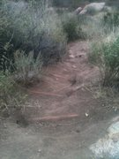 Rock Climbing Photo: Someone has been doing some nice trail work leadin...