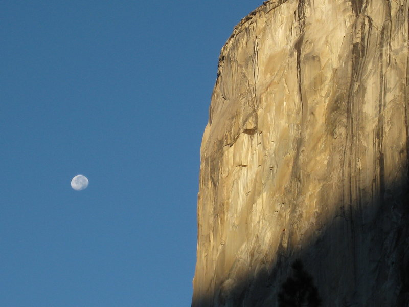 Rock Climbing Photo: Early October morning moon and El Cap.