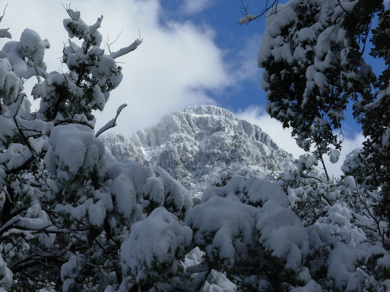 Rock Climbing Photo: Mt Wrightson from the Madera parking lot, January ...
