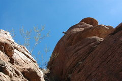 Rock Climbing Photo: AMH through the crux on the second ascent.