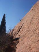 Rock Climbing Photo: Dave Wayne on Esse Curve.