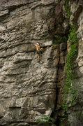 Rock Climbing Photo: Herbivore