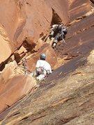Rock Climbing Photo: mondo bongo first ascent colorado national monumen...