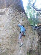 Rock Climbing Photo: first bolt chimps ahoy