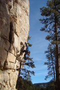 Rock Climbing Photo: Me during my sucessful redpoint attempt at Pete's ...