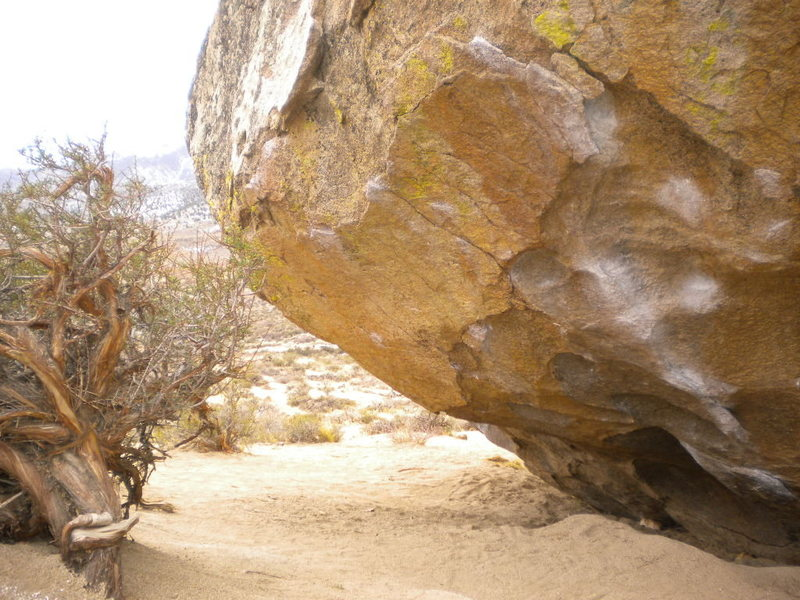 Rock Climbing Photo: One mule wonder V10 left, The cave route V6 right.