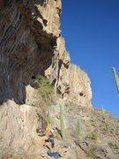Rock Climbing Photo: toast heel hooking the roof
