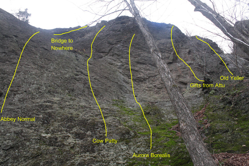 Rock Climbing Photo: There have been some new additions to the right en...