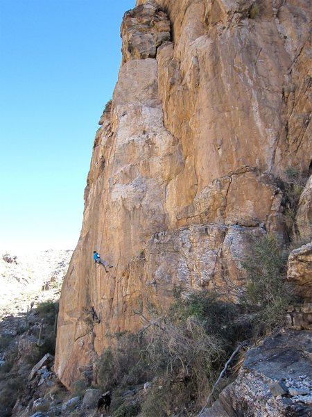 Jim Scott rapping a project left of Unfinished Sympathy. The route follows weaknesses up tho the obvious dihedral.  It bust right about 6 feet below the horizontal crack below the block.