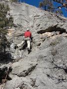Rock Climbing Photo: Ben Collett on Traditional Values.