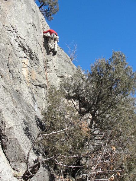 Rock Climbing Photo: Traditional Values.