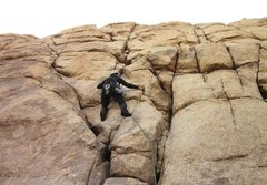 Rock Climbing Photo: Trying to warm up on an easy J-Tree climb. ; /