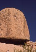 Rock Climbing Photo: EBGBs 5.10d  Joshua Tree
