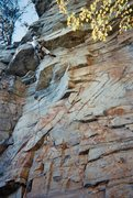 Rock Climbing Photo: Crux of Overhanging Hangover