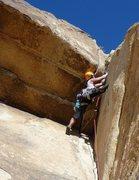 Rock Climbing Photo: Moosedog Tower, 5.9