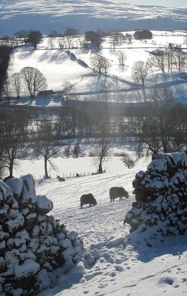 December in the Lake District 2011. Photo John Porter