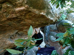 Rock Climbing Photo: Norman on Arboretum