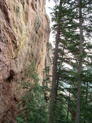 Rock Climbing Photo: Choose Life climbs the black streak just left of/b...