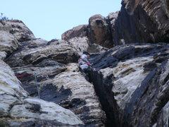 Rock Climbing Photo: big bro keeping it safe