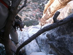 Rock Climbing Photo: looking down i guess the full first pitch with anc...