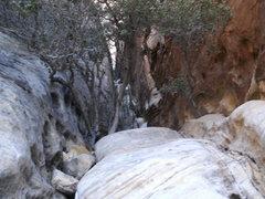 Rock Climbing Photo: the chimmney