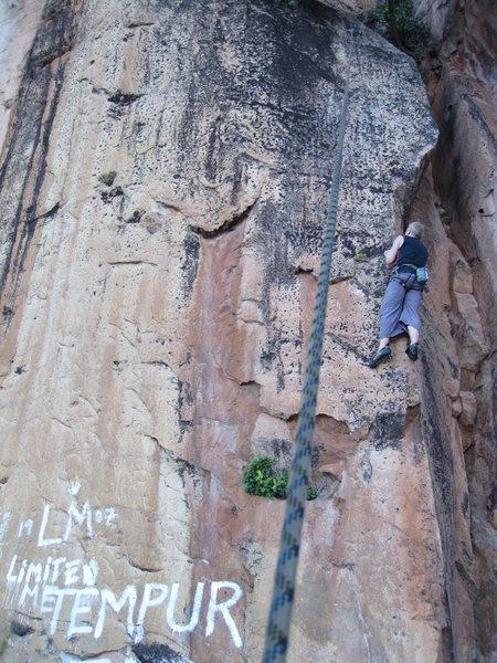 Rock Climbing Photo: Alex on TR.