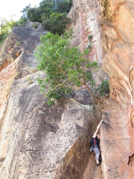 Rock Climbing Photo: Alex struggling out chimney.