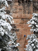 Rock Climbing Photo: Joel Unema getting serious on No Joke 5.13b, at Th...